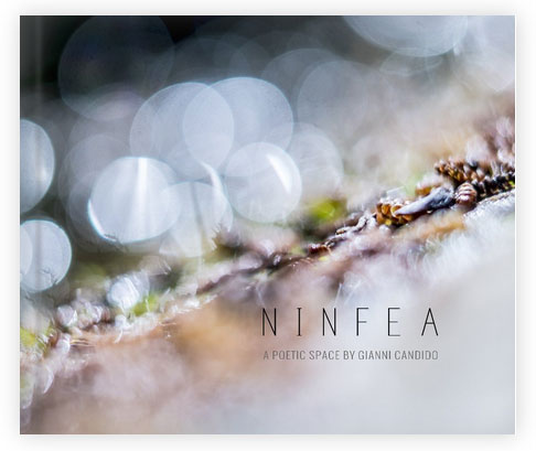 Ninfea - A book by Gianni Candido