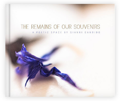 The Remains of Our Souvenirs - A book by Gianni Candido