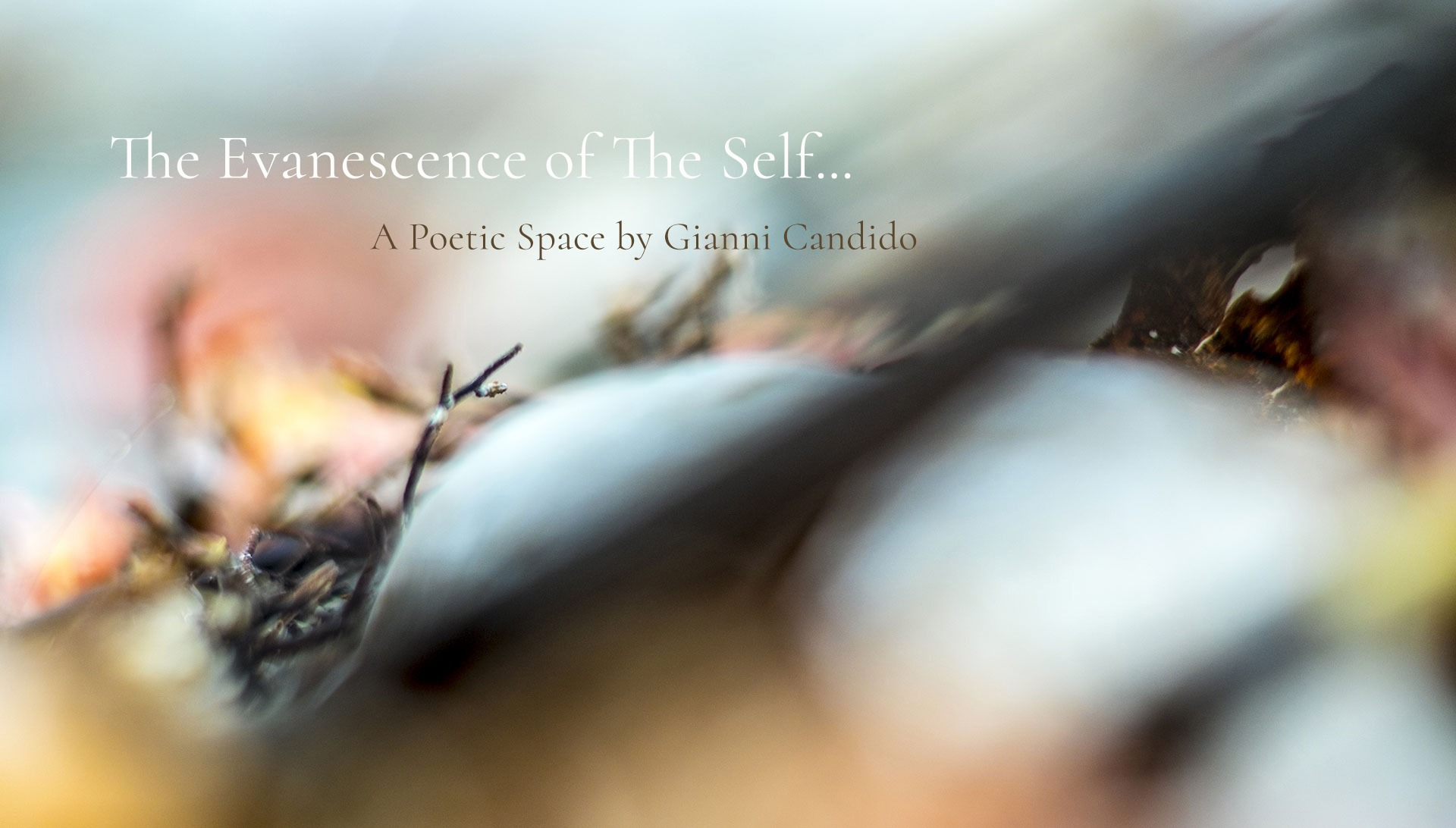 The Evanescence of The Self- A Poetic Space by Gianni Candido