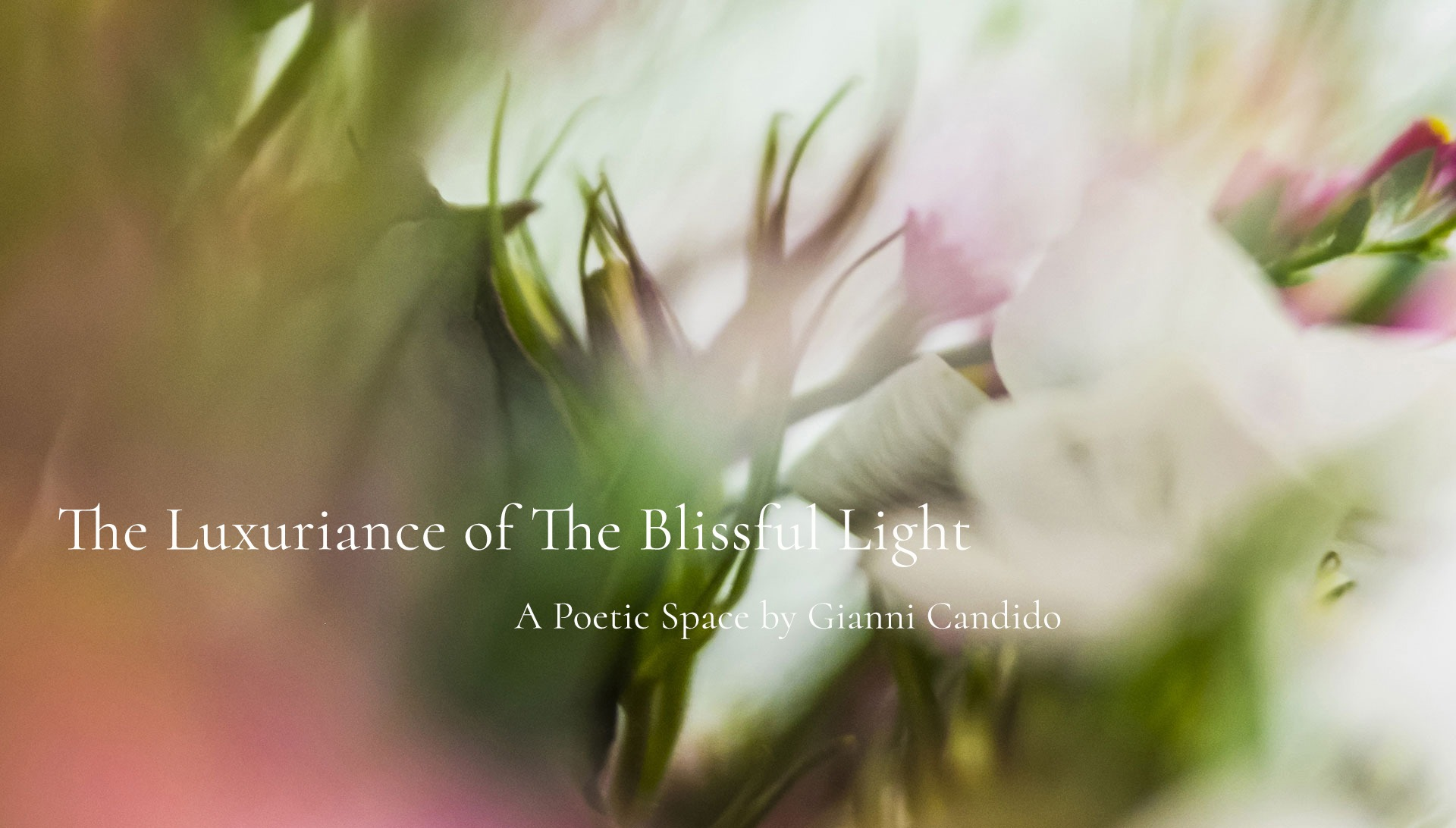 The Luxuriance of The Blissful Light - A Poetic Space by Gianni Candido