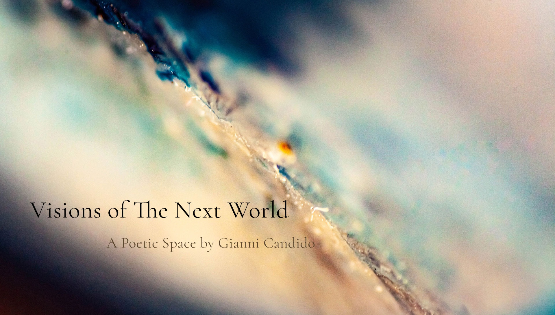 Visions of The Next World - A Poetic Space by Gianni Candido